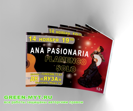 листовки афиши для концерта фламенко