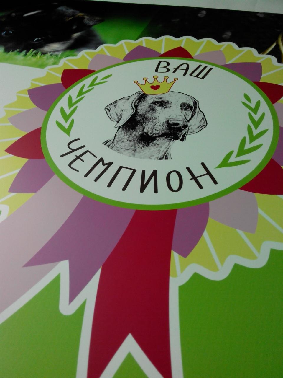 печать логотипа на пластике